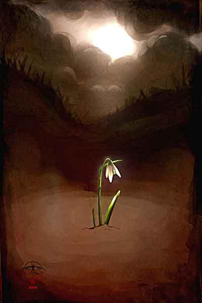 イラスト「荒れ地へ咲こうとする花」